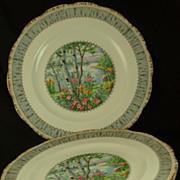 "SOLD Vintage Set of 3 Royal Albert Silver Birch Dinner Plates - 10 1/4"""