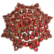 SALE Vintage Garnet Star Brooch