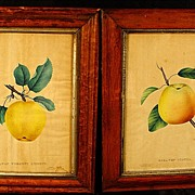 SALE Pair of Antique Maple Frames With Dewey's Hand Colored Prints