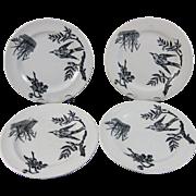 SALE Set/4 English Victorian Black Transferware Plates - Birds 1880s