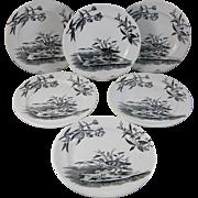 SALE Set/6 English Victorian Black Transferware Plates - Birds 1880s