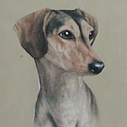 SALE Saluki dog painting...Saluki dog....