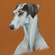 SALE Painting of a Saluki dog...Saluki dog....