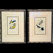 Pair of JOHN JAMES AUDUBON Hand Colored Lithograph Bird Prints - Original