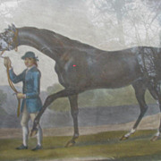 SALE Horse Engraving, Hand-Colored, Dated 1756, Portraiture of Barbraham