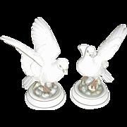 SALE Pair of Andrea Bisque Porcelain White Doves, Japan