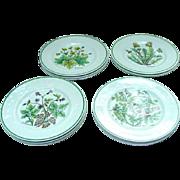 12 Wildflower Dessert or Salad Plates by Johnson Bros. for Tiffany, England
