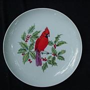 Mottahedeh Vir. Cardinal & Holly Plate