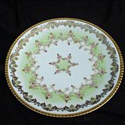SALE L S & S Limoges, France Porcelain Plate, Highly Decorative