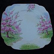 Royal Albert Blossom Time Dessert Plate w Flowering Cherry Trees