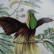SALE PENDING Mottahedeh, Portugal Emperor of Germany's  Bird of Paradise Plate
