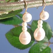 14kt Multi Freshwater Luxurious Dangle Earrings