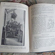 "REDUCED 1879 Flower Gardening Book ~""Town and Window Gardening"""