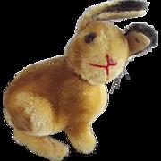 Sonny Rabbit Early One