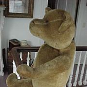 SALE Early Ideal Teddy Bear