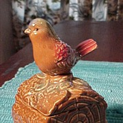 SALE Pretty Bird Container