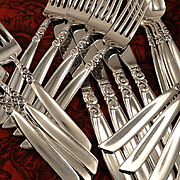 Oneida Community SOUTH SEAS Vintage 1955 Silver Plate Flatware Silverware Set Dinner Service f
