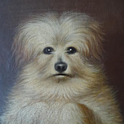 SOLD Adorable antique French unframed portrait oil painting scruffy dog in begging position da