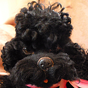 """Coco"" chic French poodle boudoir pajama dog : black curly coat : circa 1930's"