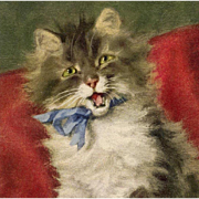 SOLD Vintage Cat Postcard by French Artist Daniel Merlin