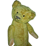 REDUCED CHARMING Early American Made Teddy Bear c. 1915