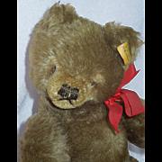 1950's Steiff Teddy Bear #2020/26 Made in Austria
