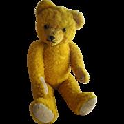 "CUTE 23"" Bright Golden Old Teddy Bear"