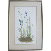 Original Tempera Botanical Floral Plant Painting by Oregon Artist Sally Haley