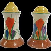 Vibrant Painted AUTUMN CROCUS Flower Clarice Cliff BIZARRE Salt & Pepper Shakers