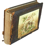 Victorian Photo Album w/ Embossed Birds Celluloid Cover - 61 Photos Children & Dapper Folks