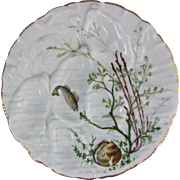 Hand Painted Porcelain Turkey Oyster Plate with Hand Painted Underwater Sea Creatures