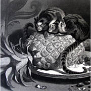 Antique Steel Engraving Landseer of Miniature Monkeys - Marmosets Victorian & Pineapple Fruit