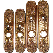 SALE Exceptional Antique Gilded Bronze Door Backplates from the Victorian Era - Two sets!