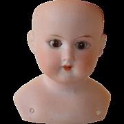 SALE Antique German Armand Marseille Doll Head