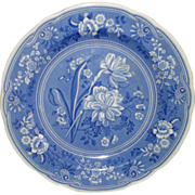 """SOLD The Spode Blue Room Collection """"Botanical"""" Plate - England"""