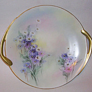 Exquisite Hand Painted Daisies Shallow Serving Plate Fraureuth Porcelain