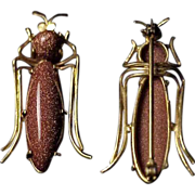 GP Goldstone Beetle Bug / Insect  Pin