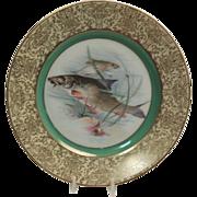 "1900's Hand Painted Bavarian P T Tirschenreth Fish Plate ""Sturgeon"""