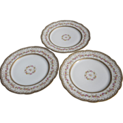 """Beautifully Decorated (3) 1890's Haviland Limoges France 9 1/8"""" Plates"""