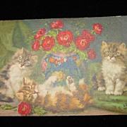 Vintage Postcard Signed D Merlin Unused - Three Kittens