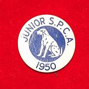 Vintage Junior SPCA Pinback 1950