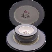 Homer Laughlin Cavalier Grey Gray Rim Pink Flowers 9 Pcs
