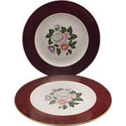 Homer Laughlin Cavalier Margaret Rose Dinner Plates
