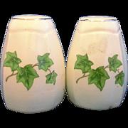 Paden City Ivy Salt Pepper Cream Paneled Gold Trim