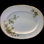 SALE Noritake Ireland Trailing Ivy Oval Platter 15 IN