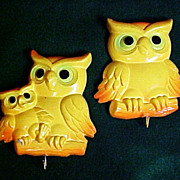 SALE Plaster of Paris Owl Motif Pot Holder Hangers, circa 1950s
