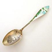 Sterling Guilloche Enamel Niagara Falls & Buffalo Souvenir Spoon