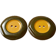 Bakelite Cookie Buttons Olive Green and Deep Butterscotch Sew Through Button 2 Color
