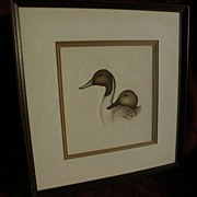 JOYCE HAGERBAUMER REED (1945-) 20th century wildlife art original fine drawing of duck heads b