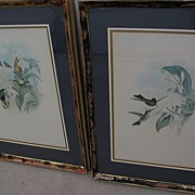 JOHN GOULD (1804-1881) **PAIR** of hand colored lithograph prints of hummingbirds by noted orn